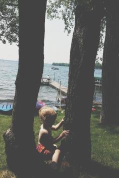 The best sittin' tree around.