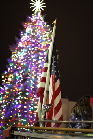 anoka-tree-lighting-blog-26